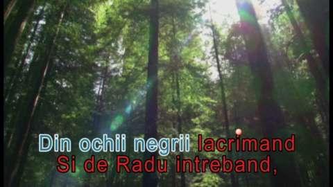 dvd original muzica karoake romaneasca 3