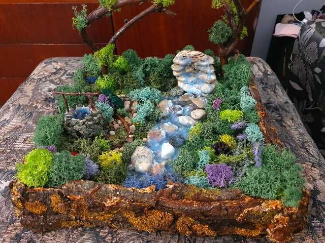 minigradina cu licheni 1