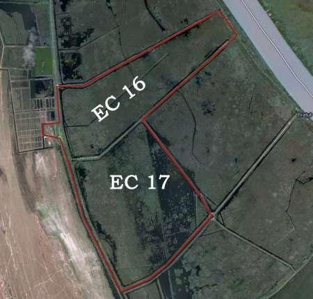 teren 736 ha delta dunarii 4