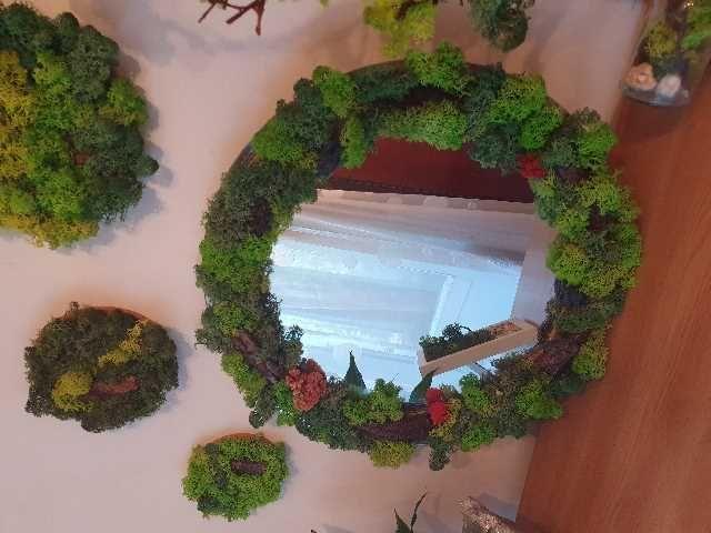 oglinda cu licheni 2