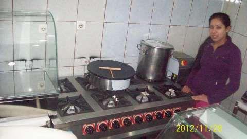 aragaze profesionale cu cuptor noi si sh 1
