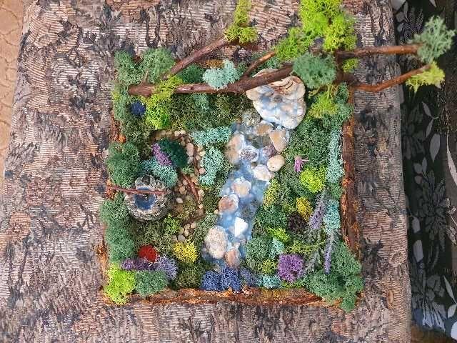 minigradina cu licheni 2