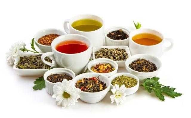 ceai - plante - ierburi naturale vrac 6
