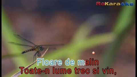 dvd original muzica karoake romaneasca 2
