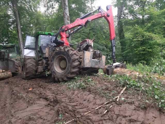 muncitori forestieri in franta 1