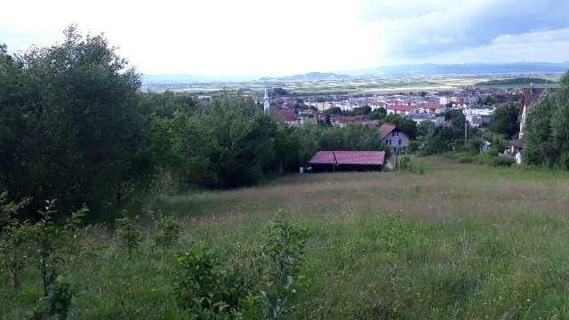 teren brasov sacele 1683 mp 3