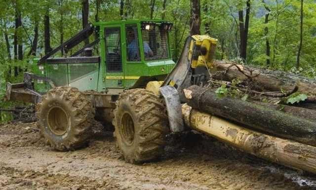 muncitori forestieri in franta 4