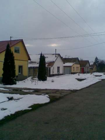 terenuri battonya - ungaria 2