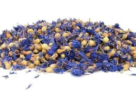 albastrele flori vrac en- gros si en- detail 1