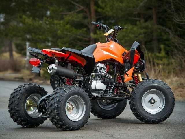atv nou model: akp carbon speedy 150cmc garantie 12luni 3
