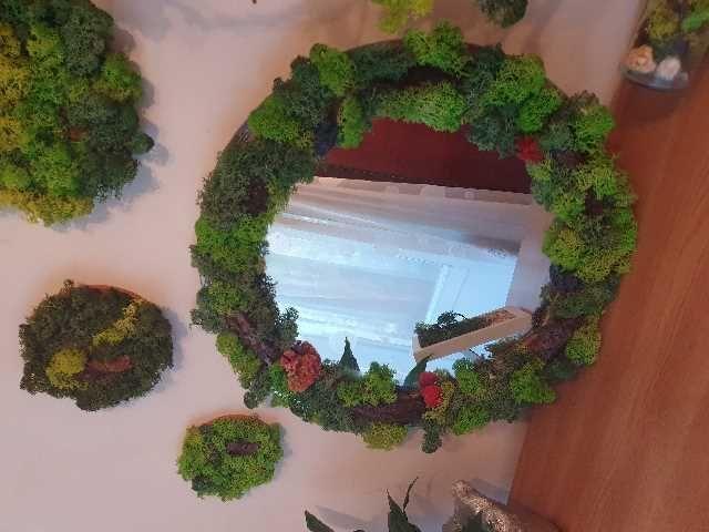 oglinda cu licheni 1